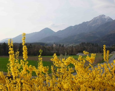 REPORTAJE VISITA A KUMZA LTD. 4/4 –Eslovenia, gastronomia, geografia y curiosidades