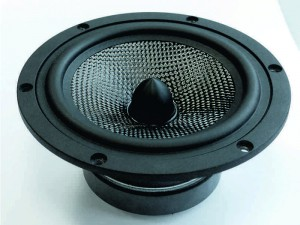 asw cantius woofer